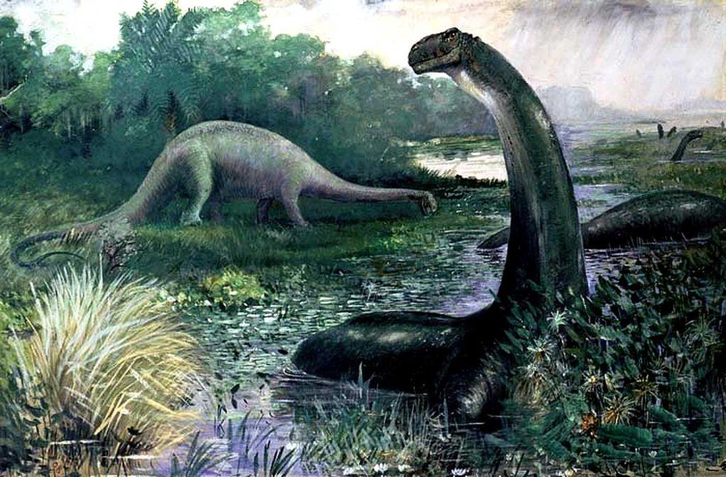 апатозавр в болоте
