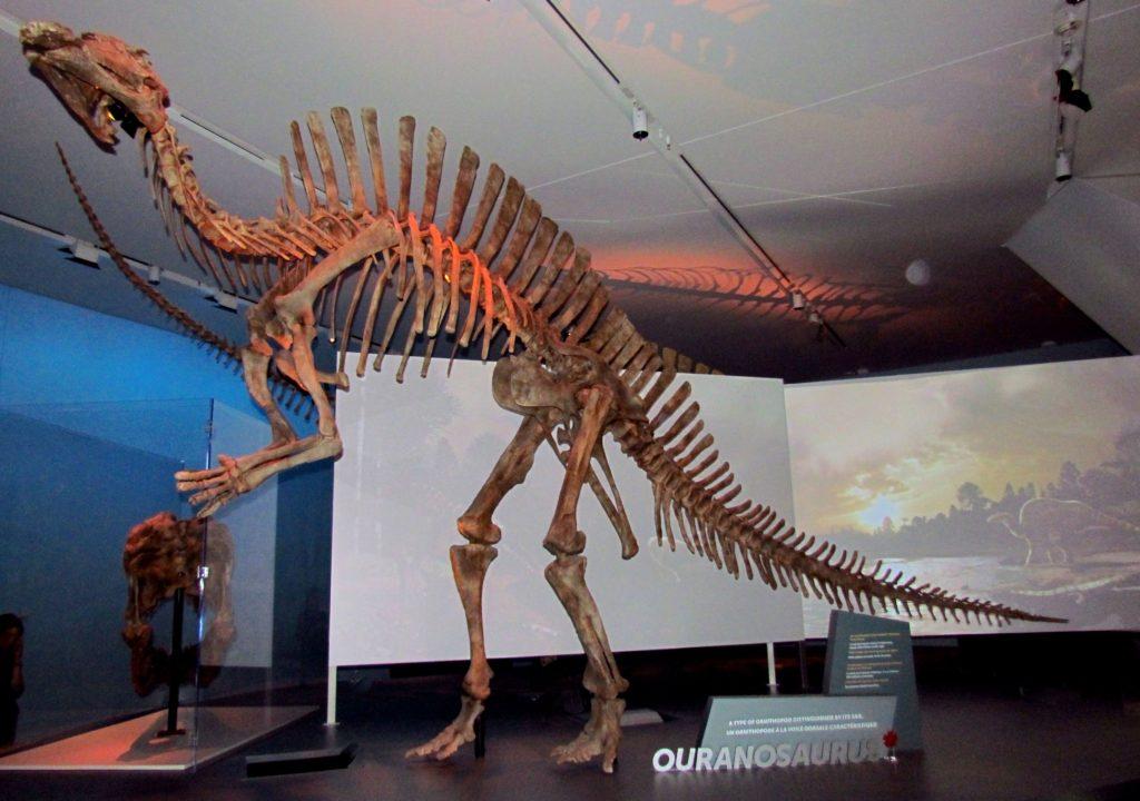 оуранозавр