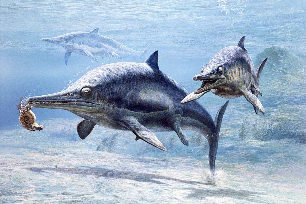 Ихтиозавр охотится на аммонита
