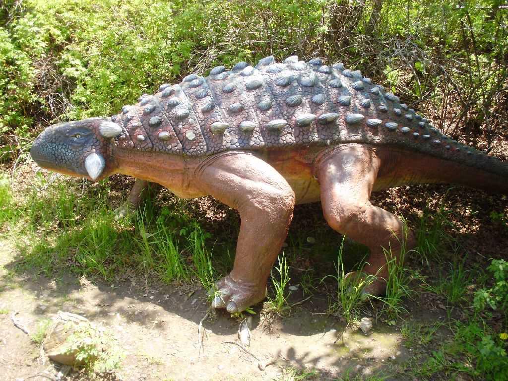 модель анкилозавра