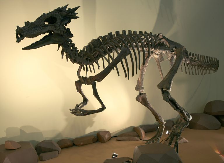 Скелет дракорекса
