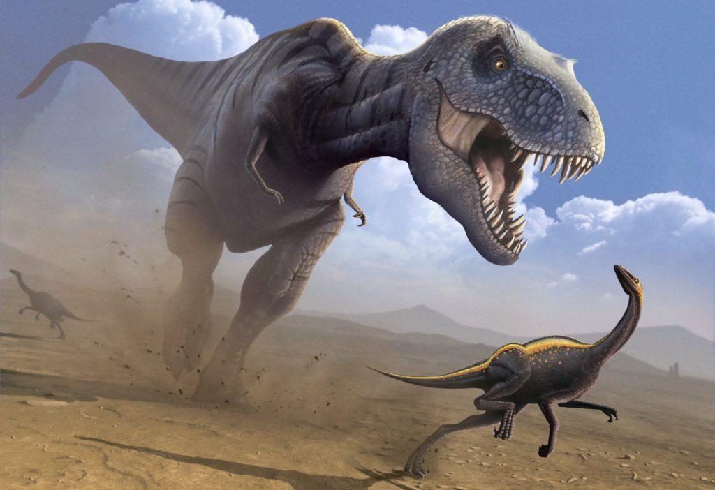 тираннозавр охотится