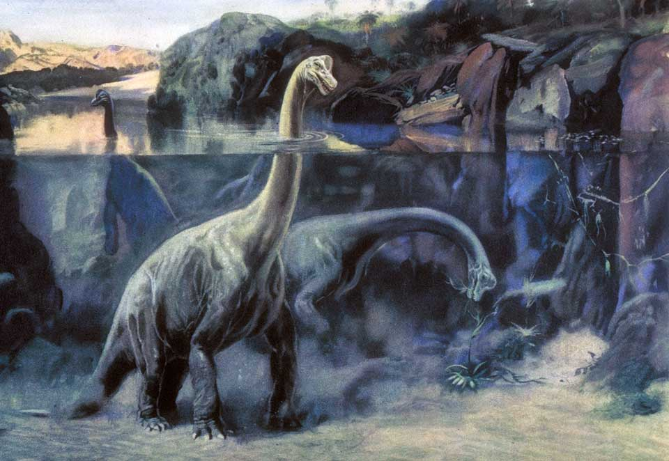 брахиозавры в воде